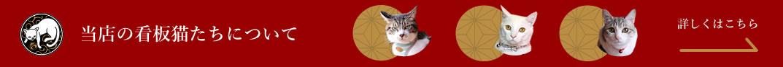 アートギャラリー本陣の猫たち
